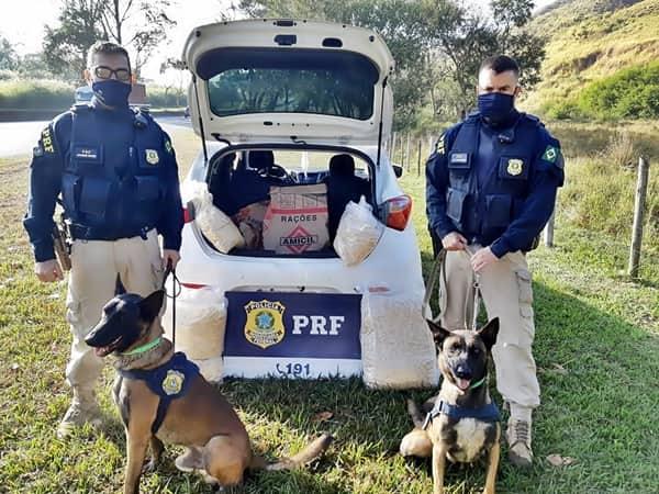 PRF apreende 37 quilos de cocaína, na Via Dutra