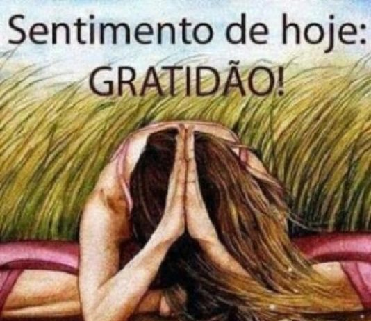 Gratidão é o tema da coluna de Rodrigo Matias