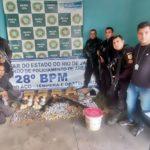 Cemitério de droga foi encontrado em sítio de Volta Redonda