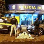Operação conjunta apreende 40 quilos de cocaína pura, na Via Dutra
