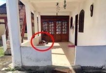 Mulher é presa por maus-tratos ao marido idoso em Paraty