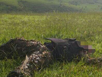 Suspeito encontrado morto dentro da mata em Resende