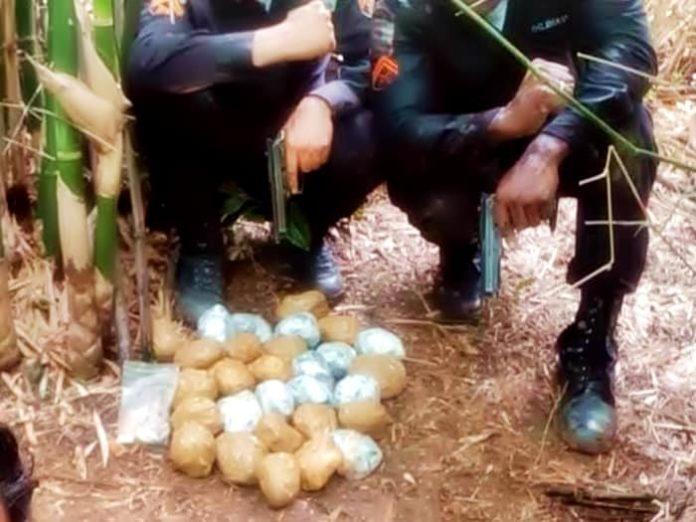 Depois de homicídio, PM descobre carga de droga enterrada em Resende