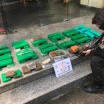 Polícia apreende tabletes de maconha no distrito turístico de Penedo