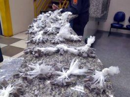 Polícia apreende 680 papelotes de maconha em Barra Mansa