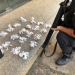 Polícia descobre cemitério de drogas em Porto Real