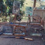 Guarda Ambiental de Barra Mansa realiza apreensão de pássaros e espingarda