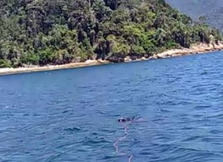 Corpo encontrado boiando com pedra no mar da Angra