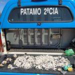 Grande quantidade de droga é apreendida pela PM em Paraíba do Sul