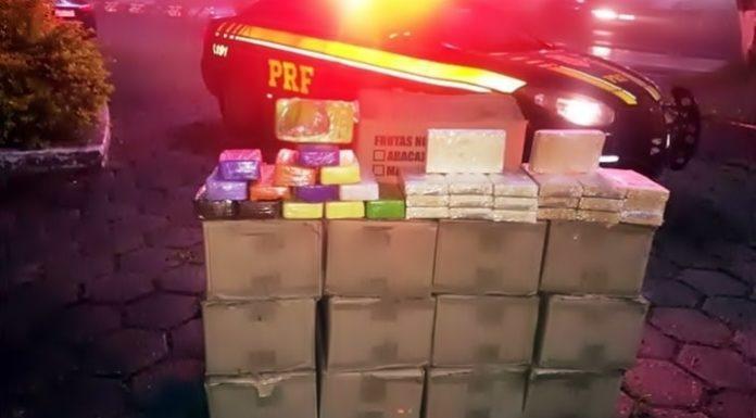 PRF apreende quase meia tonelada de cocaína pura na Dutra